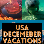 USA December Vacations
