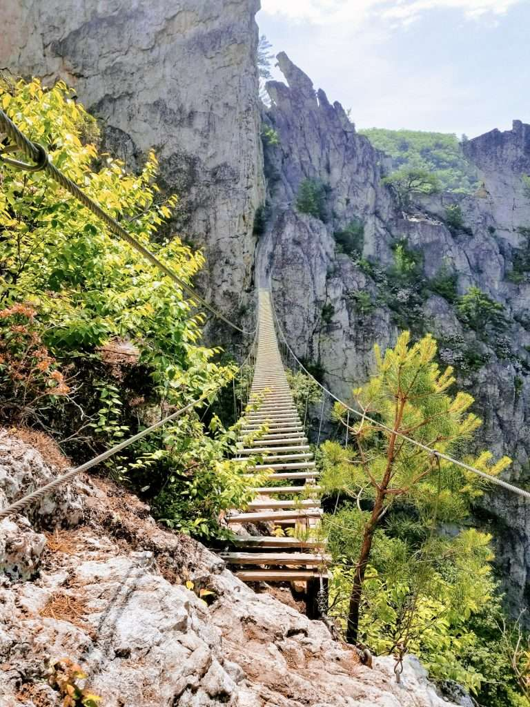 Swinging bridge at NRocks in West Virginia -  Best Places to Hike In The US, Best Family Budget Vacations, Best Hikes US, Best USA Hikes, Hiking Destinations, Underrated vacation spots USA