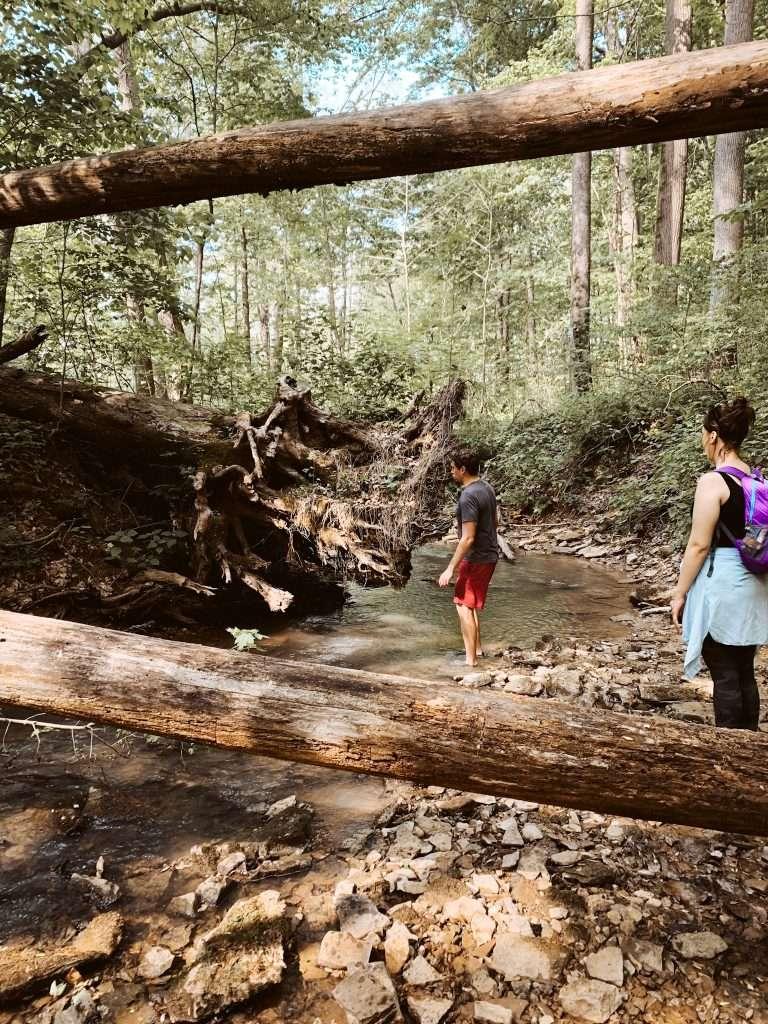 Tioga Falls Creek