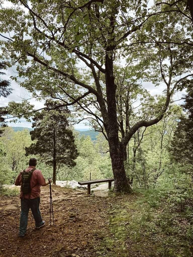 Monte Sano State Park - best hiking in huntsville alabama  Huntsville Alabama Itinerary | What To do in huntsville alabama | Fun things to do in Huntsville Alabama
